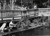view Wetlands Exhibit at National Zoo digital asset number 1