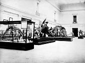 view Two Dinosaur Skeletons and the Stegosaurus Papier Mache Model digital asset number 1