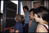 view Museum Visitors at Insect Zoo, National Museum of Natural History digital asset number 1