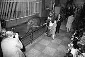 view Shanthi Reception at Zoo with Amy & Rosalynn Carter digital asset number 1