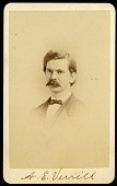 view Addison Emery Verrill (1839-1926) digital asset number 1