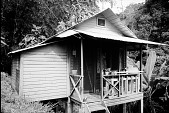 view Smith House on Barro Colorado Island digital asset number 1