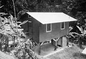 view Staff House on Barro Colorado Island digital asset number 1