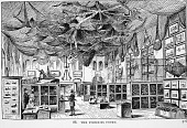 view Engraving of the Fisheries Court, U.S. National Museum digital asset number 1