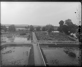 view United States Fish Commission Hatchery Ponds digital asset number 1