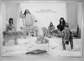 "view ""Polar Eskimo"" Exhibit, National Museum of Natural History digital asset number 1"