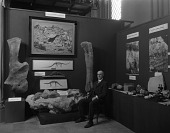 view Vertebrate Exhibit, Conference on Future of SI digital asset number 1