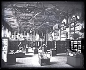 view Fisheries Exhibit in the U.S. National Museum digital asset number 1
