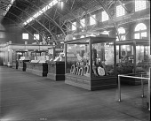 view Louisiana Purchase Exposition, Bureau of American Ethnology Exhibit digital asset number 1