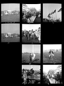 view Kite Carnival on the National Mall digital asset number 1