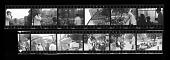 view Smithsonian Associates Tour of Zoo digital asset number 1