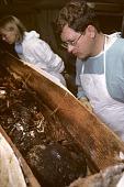 view Written in Bone: Mystery Woman Found in Lead Coffin digital asset number 1