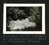 """view Coal Bank - Mine Opening is Shaded by Rhododendron and Mt. Laurel (Kentucky), c. 1935. Caption reads, """"Each Family Has Its """"Coal Bank"""" - Here the Mine Opening is Shaded by Rhododendron and Mt. Laurel."""" (Braun image no. 7-9) [Image no. SIA2007-0045] digital asset: Coal Bank - Mine Opening is Shaded by Rhododendron and Mt. Laurel (Kentucky), c. 1935. Caption reads, """"Each Family Has Its """"Coal Bank"""" - Here the Mine Opening is Shaded by Rhododendron and Mt. Laurel."""" (Braun image no. 7-9) [Image no. SIA2007-0045]"""