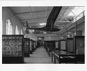 """view """"Falcon"""" Glider suspended from the ceiling over the Textile Exhibit in the Arts and Industries Building, 1956 digital asset number 1"""