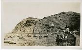 view Avalon Harbor, Catalina Island c. 1905 digital asset number 1