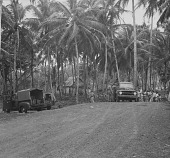 view The Air Force Trucks at Río Salud, Colón, Panama, 1952 digital asset number 1