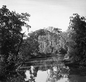 view Río Vidal at Puerto Vidal, Panama, 1953 digital asset number 1
