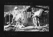 view Mary Agnes Chase on Horseback in Brazil 1929 digital asset number 1