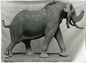 view Miniature model of Fenykovi elephant done by Norman N. Deaton digital asset number 1