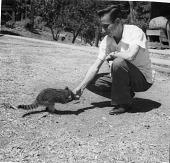 view Ratibor Hartmann with a Raccoon digital asset number 1