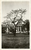 view Tree in front of the United States National Museum (now the National Museum of Natural History) digital asset number 1