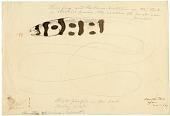 view Drawing of Muraenoid digital asset number 1