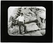 view Diplodocus over 80 Feet in Length digital asset number 1