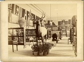 view Columbian Historical Exposition in Madrid, Spain digital asset number 1