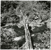 view Foot Bridge Across Rio Colorado, Panama digital asset number 1