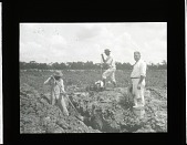 view Fossil Excavation in Florida digital asset number 1