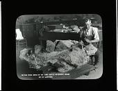 view Thomas Horne Preparing Diplodocus Specimen digital asset number 1
