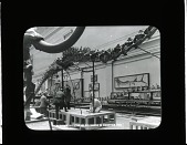 view Mounting Skeleton of Diplodocus in Exhibition Hall digital asset number 1