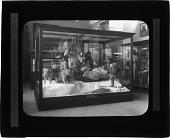 view Hudson Bay Eskimo Group - Natural History Museum digital asset number 1