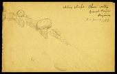 view Drawings, circa 1883 digital asset number 1