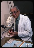 view G.Arthur Cooper at a Microscope digital asset number 1