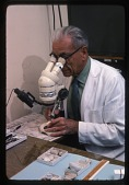 view G. Arthur Cooper Using a Microscope digital asset number 1