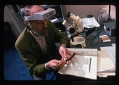 view Robert H. Gibbs, Jr., Studying Fish digital asset number 1