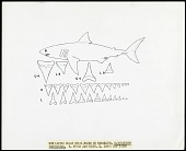 view Drawing of shark teeth of the Great White Shark digital asset number 1