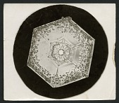 view Wilson Bentley's Snowflake 951, c. 1890 digital asset number 1