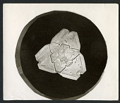 view Wilson Bentley's Snowflake 482, c. 1890 digital asset number 1