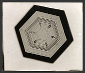 view Wilson Bentley's Snowflake 234, c. 1890 digital asset number 1