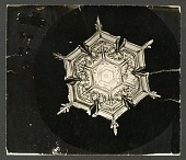 view Wilson Bentley's Snowflake 579A, c. 1890 digital asset number 1