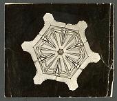 view Wilson Bentley Photomicrograph of Stellar Snowflake No. 134 digital asset number 1