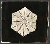 view Wilson Bentley Photomicrograph of Lamellar Snowflake No. 188 digital asset number 1