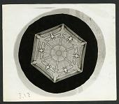 view Wilson Bentley Photomicrograph of Lamellar Snowflake No. 375 digital asset number 1