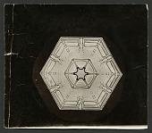 view Wilson Bentley Photomicrograph of Lamellar Snowflake No. 200 digital asset number 1