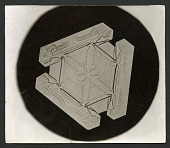 view Wilson Bentley Photomicrograph of Tabular Snowflake No. 173 digital asset number 1