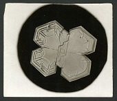 view Wilson Bentley's Snowflake 1225, c. 1890 digital asset number 1