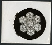 view Wilson Bentley's Snowflake 10, c. 1890 digital asset number 1