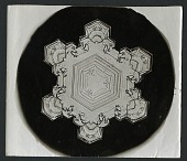 view Wilson Bentley's Snowflake 1205 c. 1890 digital asset number 1